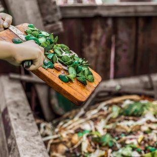 Jde to i ve velkém provozu: bioodpad z restaurace zpracovávají kompostéry